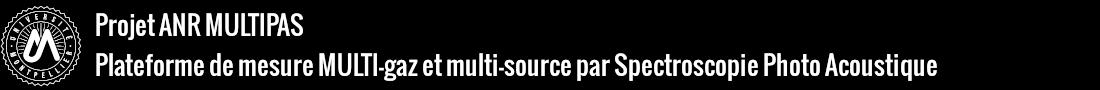 Multipas Logo